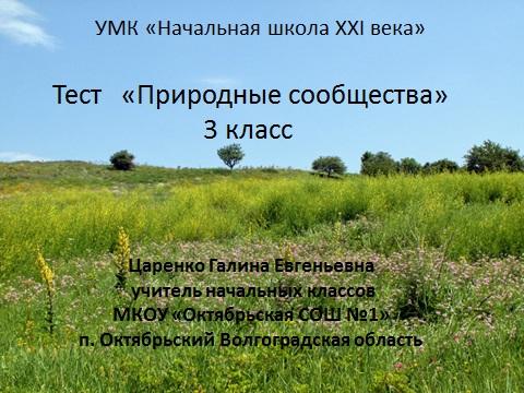 """Тест по УМК """"Начальная школа"""