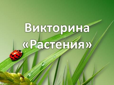 Растения в теме материки земли