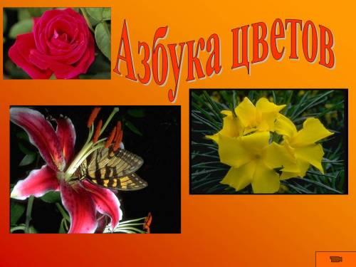 Как сделать азбуку цветов