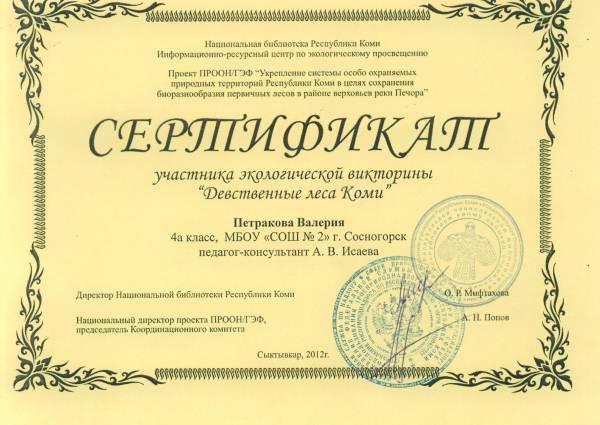 Шаблон сертификата участника конкурса по экологии